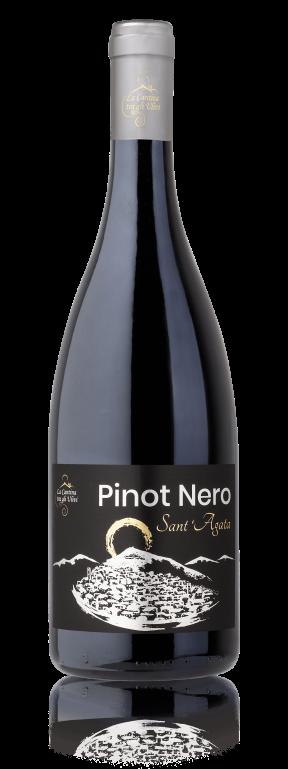 Pinot Riflesso
